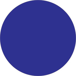 "2"" Dark Blue Inventory Circle Labels"