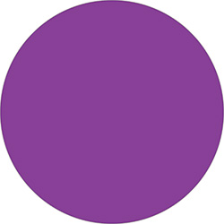 "2"" Purple Inventory Circle Labels"